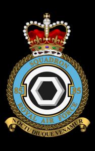 85 Squadron Association logo